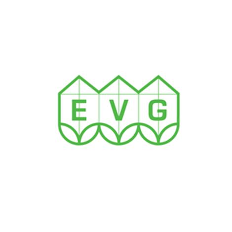 EVG Case Study